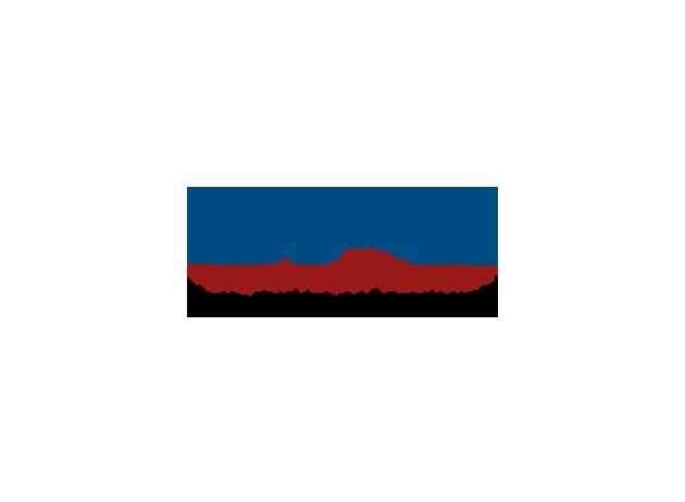 DPC Digital Policy Conucil